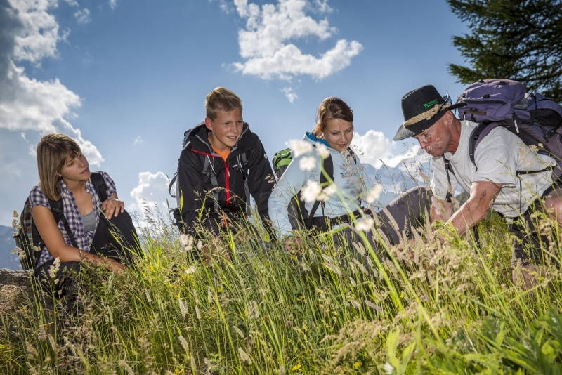 Heiligenblut Guided Herb Walk